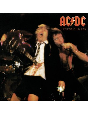 AC/DC Rock Saws puzzle If You Want Blood (500 pieces)