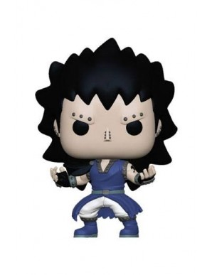 Fairy Tail POP! Animation Vinyl figurine Gajeel...