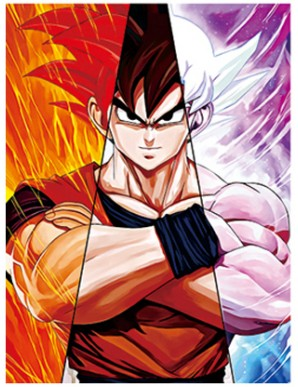 Animation Dragon Ball Affiche lenticulaire 3D...